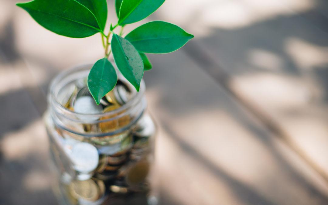 befektetésekkel a fenntarthatóságért
